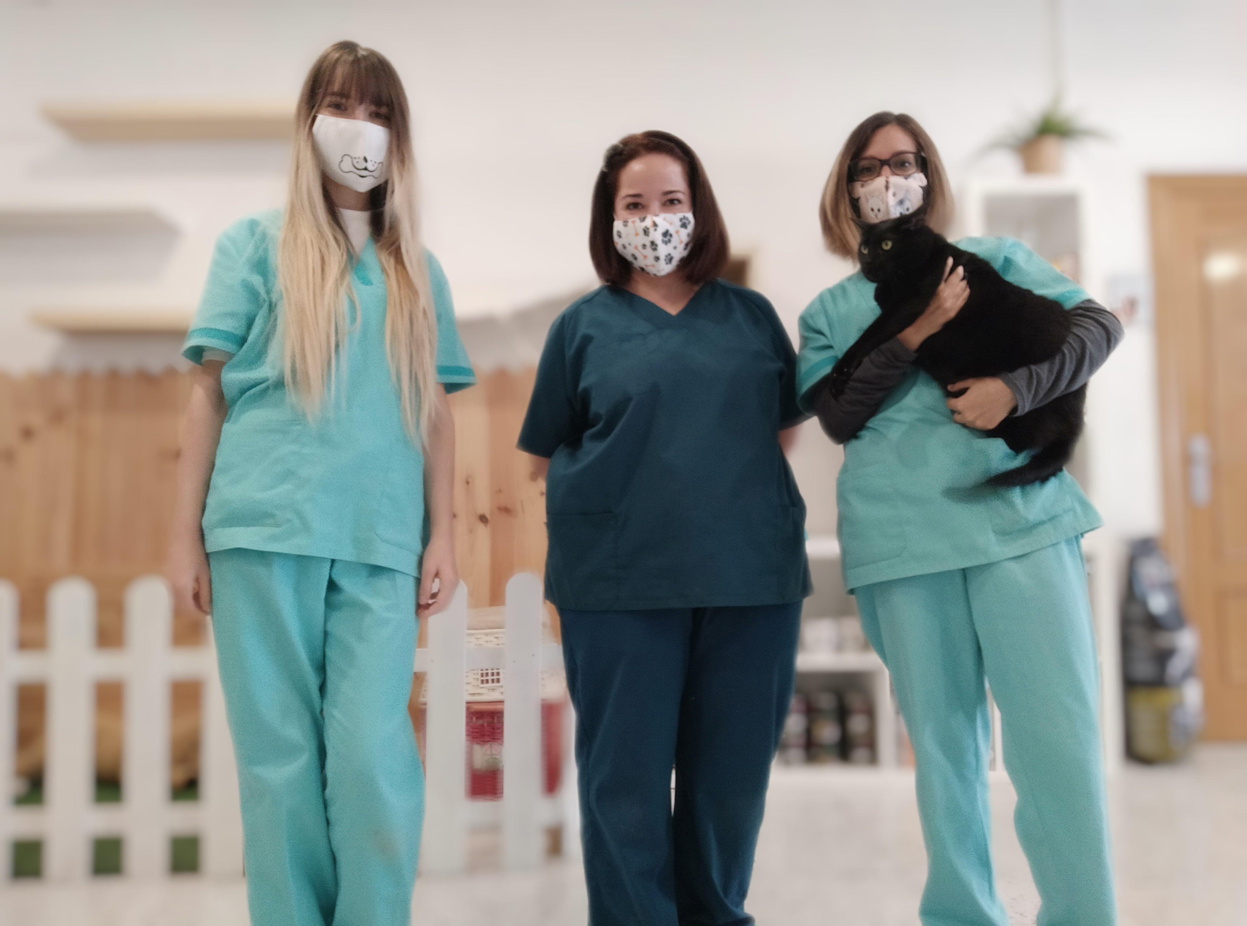 Prevención y tratamiento para el bienestar de tu mascota - Sandra Portals Arnáez y Laura Catalán Casorrán, veterinarias y etólogas en Zaragoza.
