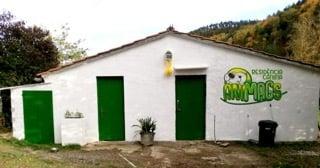 Un retiro vacacional para tu mascota - Noemí Molinero, cuidadora de perros y gatos en Girona.