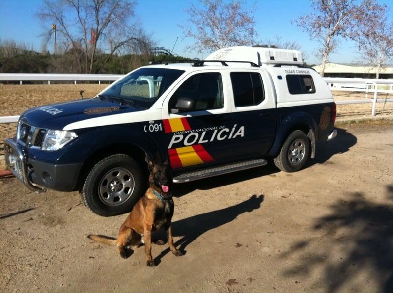 Perros educados, perros y dueños felices - Francisco Javier Moreno Alonso, educador y adiestrador canino en Madrid.