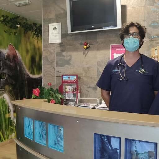 Tu veterinario de confianza para el bienestar de tu mascota - Javier Llanos Méndez, veterinario en Lepe.