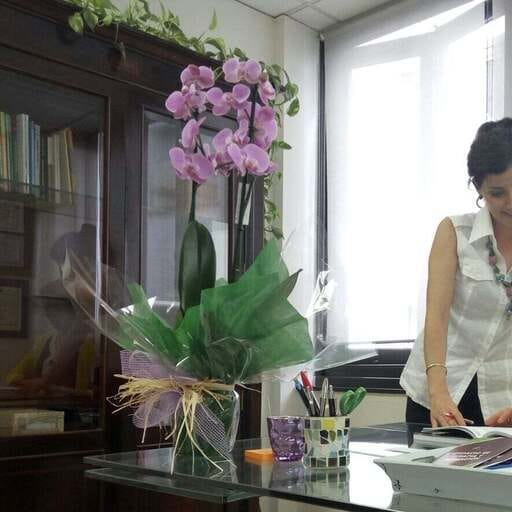 Terapias que devuelven la seguridad en sí mismos - Yolanda Forcelledo – Psicóloga en Gijón