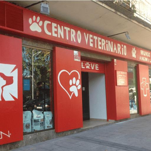 Tu centro veterinario para cuidar la salud de tu mejor amigo - Héctor, veterinario en Alcorcón, Madrid.