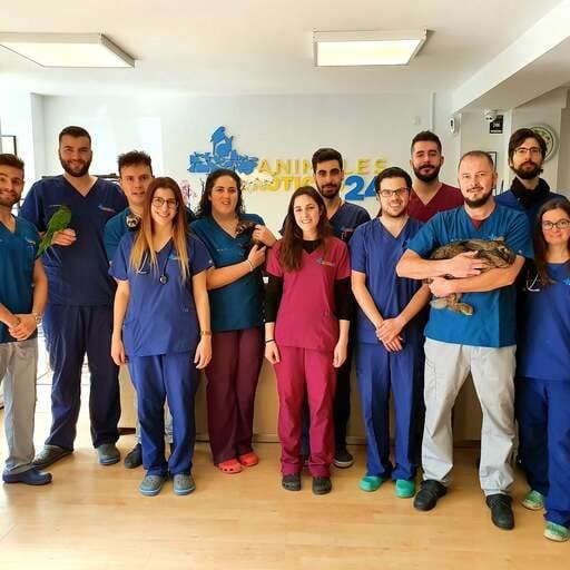 Centro veterinario 24 horas especializado en animales exóticos - Javier Fernández Martínez y Pablo Casar Castro, veterinarios en Madrid.