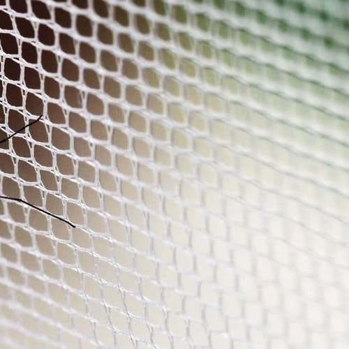 Sustitución de mosquitera